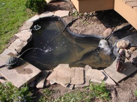 Slate work/turtle