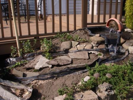 Minimum Landscaping